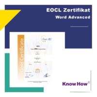 Word Advanced Onlinekurs